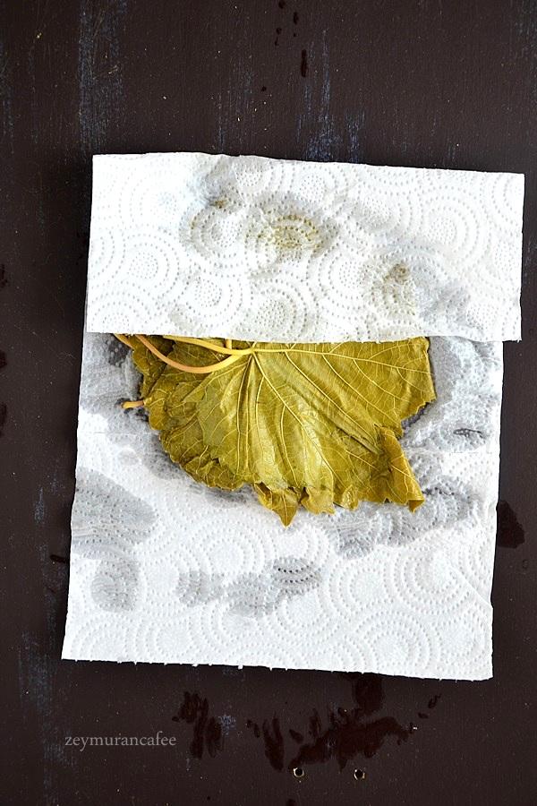 asma yaprağı dondurucuda nasıl saklanır