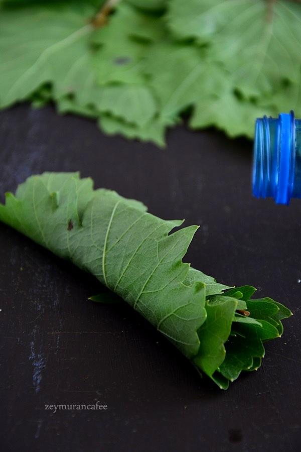 yaprak pet şişede nasıl saklanır