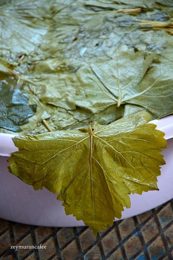 salamura yaprağı nasıl kurulur